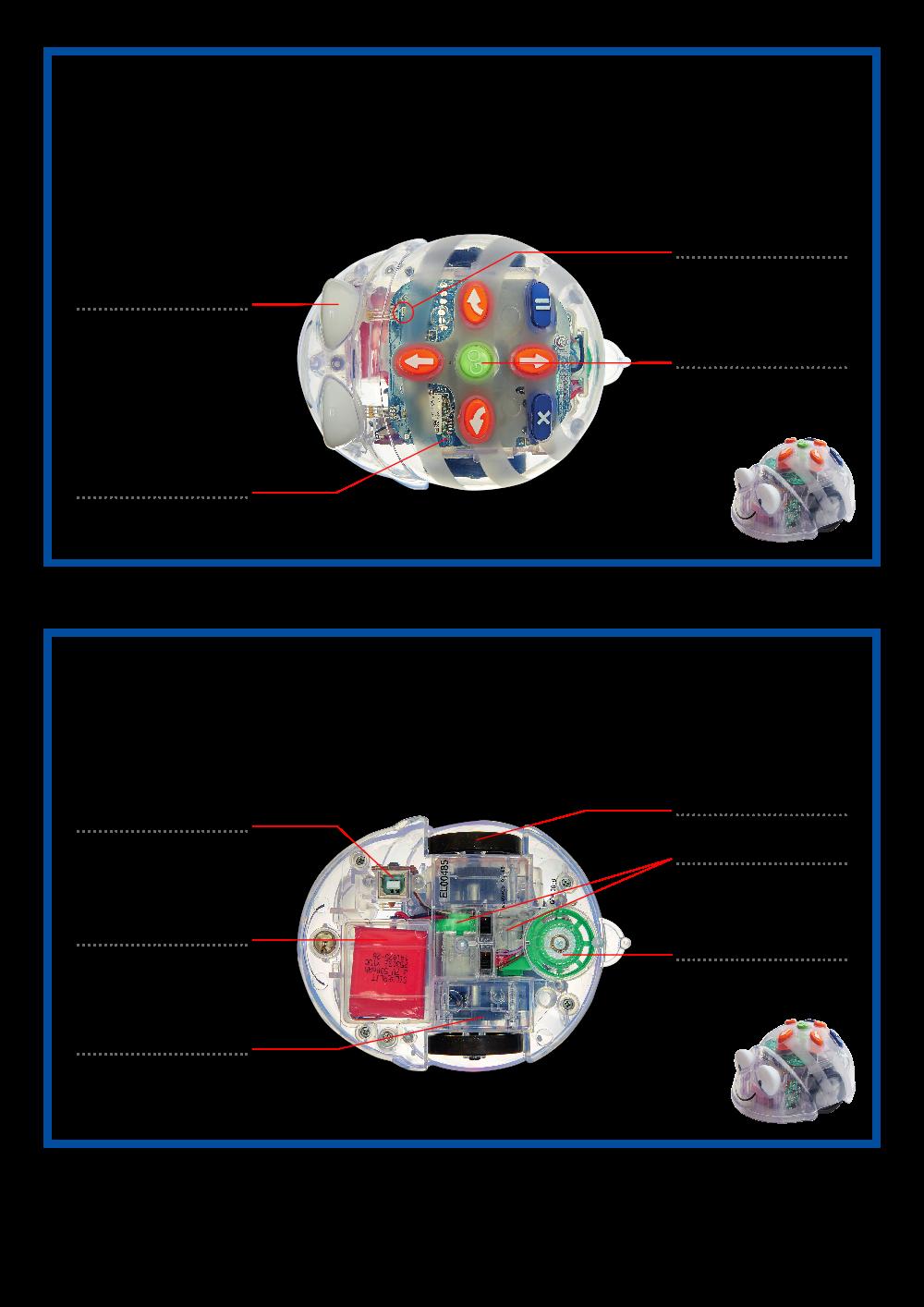 Les composants de Blue-Bot